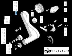 Distributieriem voor Fiat Professional Ducato